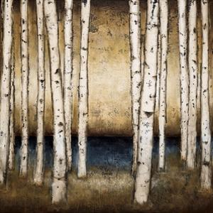 Birch Landing by Patrick St. Germain