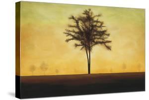 Golden Horizon by Patrick St^ Germain