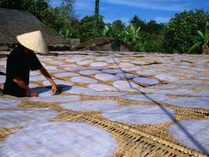Drying Rice Paper Before Cutting into Noodles, Vietnam by Patrick Syder