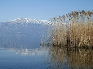 Lake Ohrid Shore with Macedonian Mountains in Background by Patrick Syder