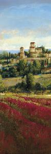 Tuscan Harvest I by Patrick