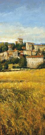 Tuscan Harvest II