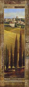 Tuscan Valley I by Patrick