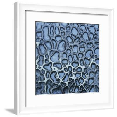 Pattern in Wet Stone-Micha Pawlitzki-Framed Photographic Print