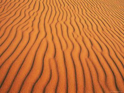Patterns in Sand Dunes in Erg Chebbi Sand Sea, Sahara Desert, Near Merzouga, Morocco-Lee Frost-Photographic Print