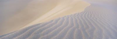 Patterns in the Sand-Bill Hatcher-Photographic Print