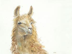 Save the Drama for your Llama by Patti Mann