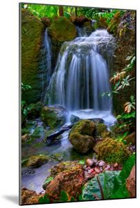 Waterfall by Patti Sullivan Schmidt