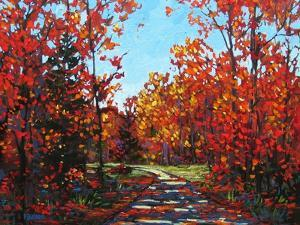 Autumn Walk in the Hudson Valley by Patty Baker