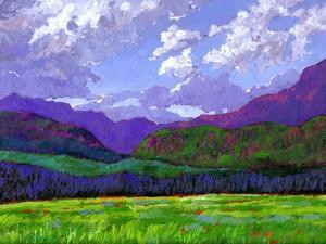 Durango Landscape by Patty Baker