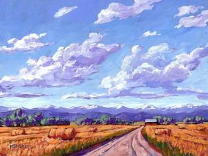 Hay Bales In Boulder County by Patty Baker