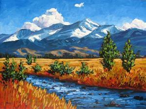 High Country Creek, Colorado by Patty Baker