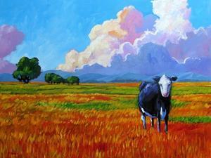 Lone Cow II by Patty Baker
