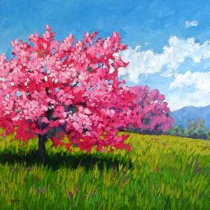Pink Blossoms on a Hillside by Patty Baker