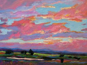 Pink Clouds Over the Foothills by Patty Baker