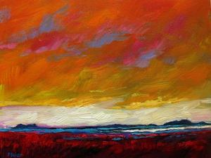 Pink Clouds over the Plains by Patty Baker