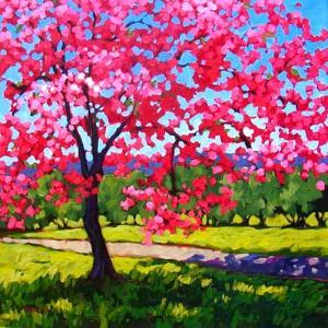 Shadows under a Blossoming Tree by Patty Baker
