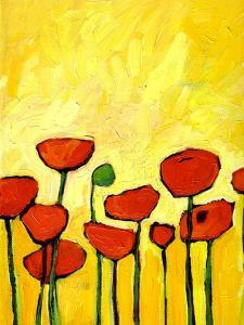 Spring Poppies 2 by Patty Baker