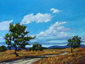 Windy Day In Colorado by Patty Baker
