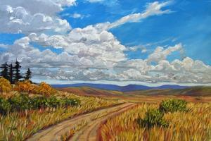 Wyoming Backroad near Vedauwoo, Wyoming by Patty Baker