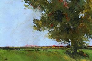 Autumn Oak and Empty Fields by Paul Bailey