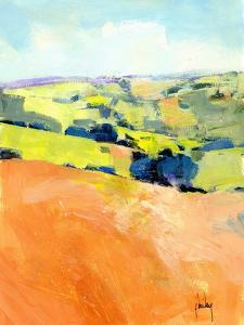 Downland One by Paul Bailey