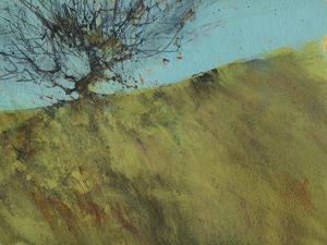 Gilfach Hawthorn by Paul Bailey