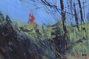 Hillside Clearing by Paul Bailey