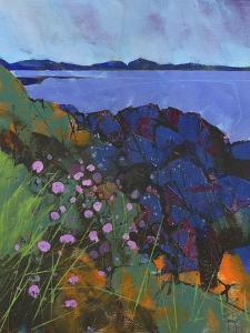 Llyn Rocks by Paul Bailey