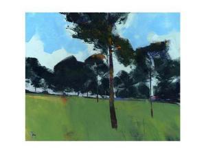 Moorland Pines by Paul Bailey