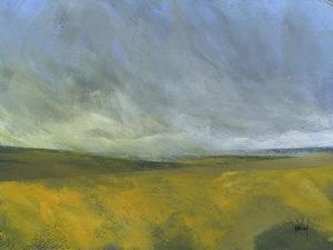 Open Moor by Paul Bailey