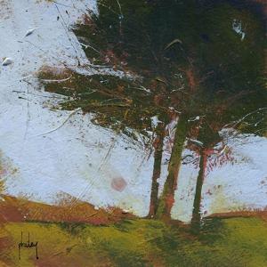 Tair Coeden by Paul Bailey