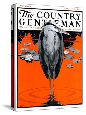 """""""Crane and Lilly Pads,"""" Country Gentleman Cover, May 3, 1924"""