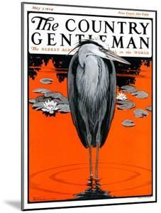 """""""Crane and Lilly Pads,"""" Country Gentleman Cover, May 3, 1924 by Paul Bransom"""