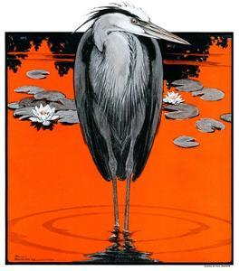 """Crane and Lilly Pads,""May 3, 1924 by Paul Bransom"