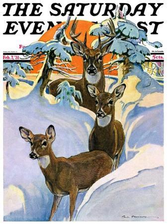 """Deer in Snow,"" Saturday Evening Post Cover, February 7, 1931"