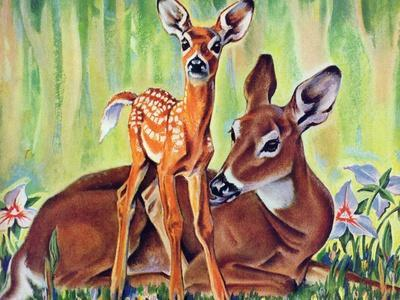 """""""Doe and Fawn in Forest,"""" June 1, 1940"""