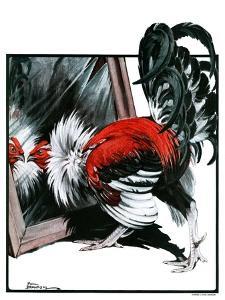 """""""Fancy Rooster in Mirror,""""April 21, 1923 by Paul Bransom"""