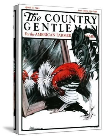 """""""Fancy Rooster in Mirror,"""" Country Gentleman Cover, April 21, 1923"""