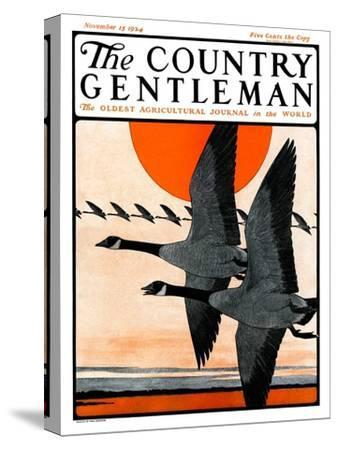 """Flock of Geese in Formation,"" Country Gentleman Cover, November 15, 1924"