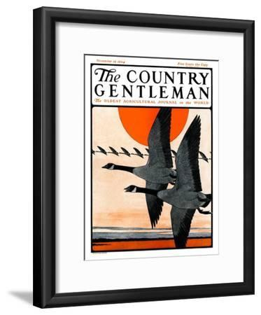 """""""Flock of Geese in Formation,"""" Country Gentleman Cover, November 15, 1924"""