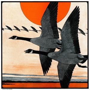 """""""Flock of Geese in Formation,""""November 15, 1924 by Paul Bransom"""