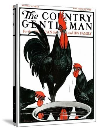 """""""Fowl Reflections,"""" Country Gentleman Cover, October 27, 1923"""