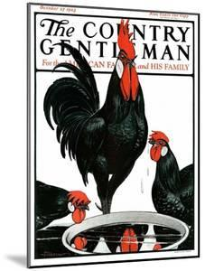 """""""Fowl Reflections,"""" Country Gentleman Cover, October 27, 1923 by Paul Bransom"""