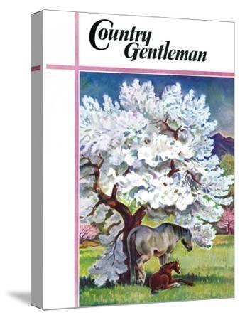 """""""Horses and Tree Blossoms,"""" Country Gentleman Cover, May 1, 1940"""