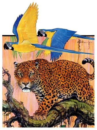 """Leopard and Parrots in Jungle,""September 2, 1933"