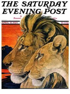 """Lion Pair,"" Saturday Evening Post Cover, April 27, 1929 by Paul Bransom"