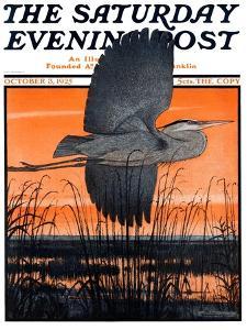"""""""Marsh Bird,"""" Saturday Evening Post Cover, October 3, 1925 by Paul Bransom"""