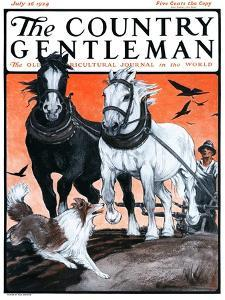 """Plowing the Field,"" Country Gentleman Cover, July 26, 1924 by Paul Bransom"