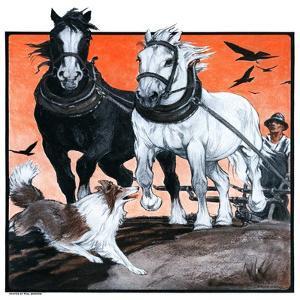 """""""Plowing the Field,""""July 26, 1924 by Paul Bransom"""